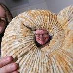 UW-Whitewater senior and Goldwater Scholar Melanie Sorman, left, and her faculty adviser, Associate Professor Rex Hanger are shown with a 120 million-year-old ammonite fossil in a geology lab at UW-Whitewater on Tuesday, April 5, 2016. Sorman has been working with a gamma ray spectrometer, which measures natural radioactivity in rocks and tells the oxygen level of ancient oceans. Hanger described the ammonite as an octopus-like creature stuffed into a coiled shell. Photo by Craig Schreiner.