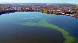 UW-Stout_RedCedarRiverReinvestment_LAKES4_algae