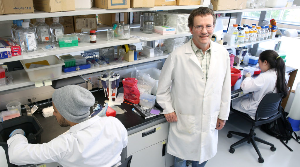 """Jim Burritt, associate professor of biology, is photographed Tuesday, July 7, 2015 in a biotechnology lab in Jarvis Hall, while working with students and lab assistants on his two-year bee study project, """"Honey Bee Hemocyte Profiling by Flow Cytometry"""". Burritt is trying to help figure out the problem known as hive winter kill, which is threatening the honeybee industry and possibly even the species itself. (UW-Stout photo by Brett T. Roseman)"""