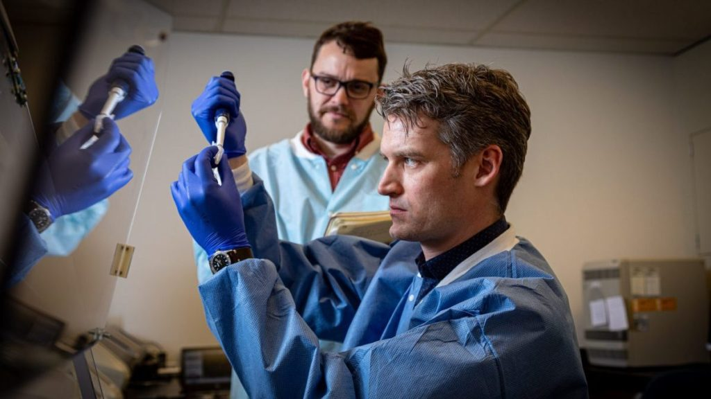 Photo of Peter Thielen, front, working with Tom Mehoke on immediate sequencing of the SARS-CoV-2 genome, the virus that causes COVID-19, at the Johns Hopkins Hospital molecular diagnostics laboratory. Johns Hopkins APL / Ed Whitman