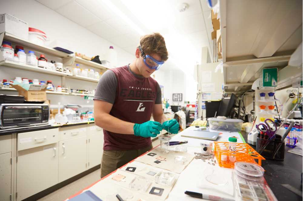 Photo of UWL senior Jason Martin in the lab. Zinc films have a variety of practical applications — from preventing iron and steel from rusting, to converting CO2 into useable fuels, to storing energy via a zinc-based battery.