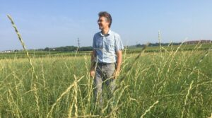 Photo of a UW-Madison researcher standing in a field