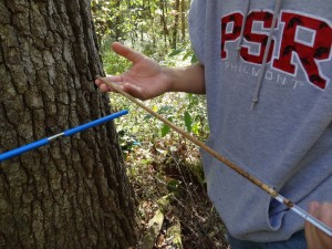 tree age measuring instruments