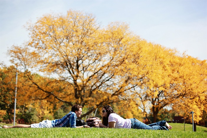 Two people relaxing on the grass in front of a maple tree