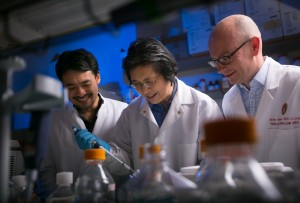 Dr. Nathan Welham (right), visiting scientist Kohei Nishimoto (left) and associate scientist Changying Ling work in the Welham Lab Tuesday, Nov. 16, 2015, at the Wisconsin Institute for Medical Research in Madison, Wis. Welham and his team have bio-engineered vocal chords that can generate a voice in humans. (John Maniaci/UW Health)