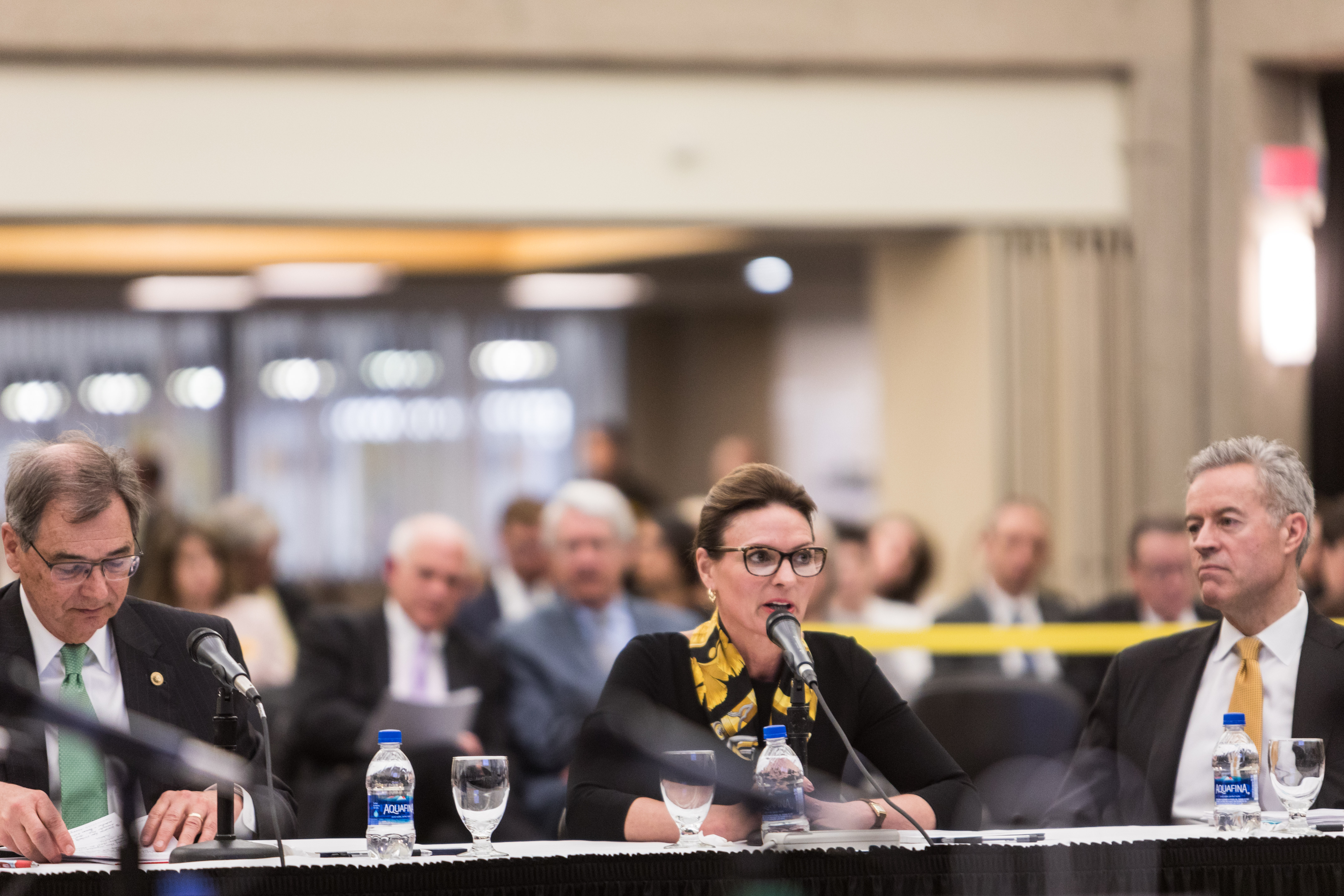 Photo of UW-Superior Chancellor Renee Wachter speaking at the Board of Regents meeting hosted by UW-Milwaukee on June 6, 2019. (Photo by Mikaila Dusenberry/UW-Milwaukee)